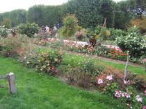 Der Botanische Garten Jardin des Plantes in Paris  © Kezia1